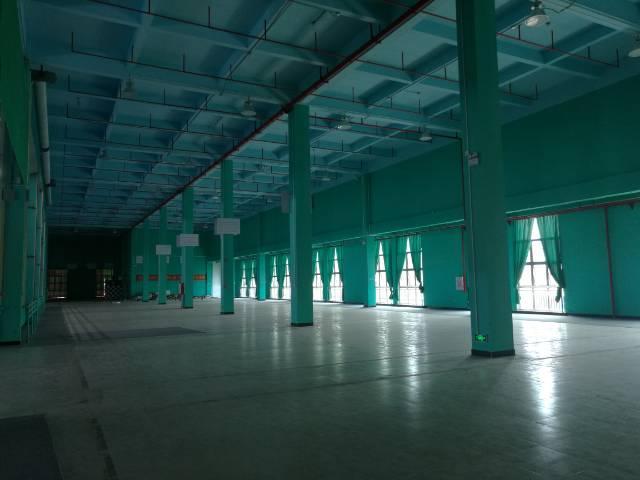 二楼的价格一楼的空间,非常适合各类生产及仓储行业