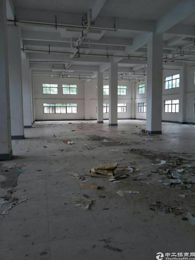 企石新出原房东标准厂房一楼500平方含装修