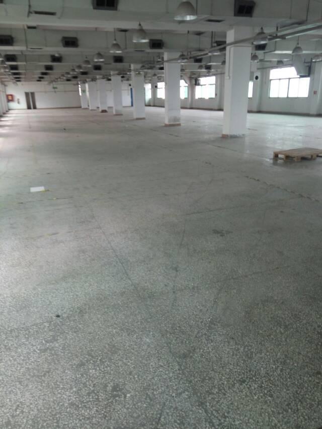 平湖华南城附近二三楼厂房4300急租,急急急