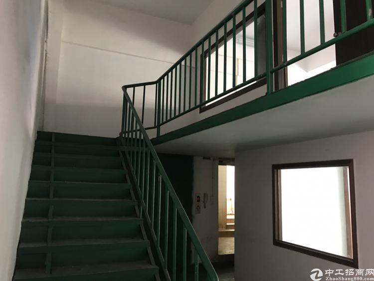 大浪华荣路一楼带阁楼1260平方,已空,报价30