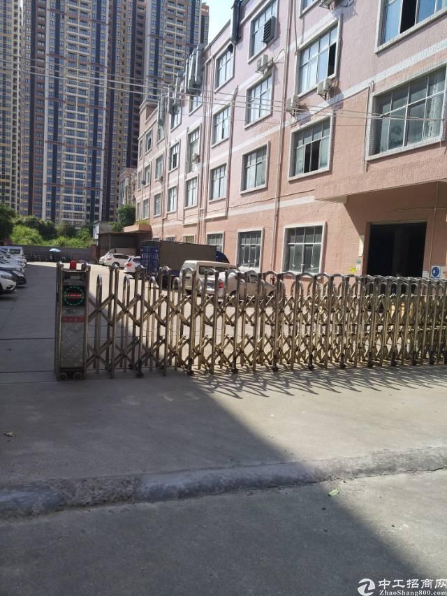 坪山 南湖工业区一楼2000平层高6米可分租-图4