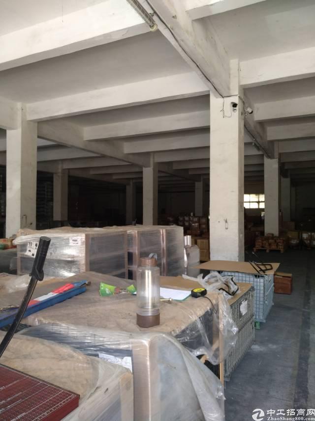 坪山 南湖工业区一楼2000平层高6米可分租