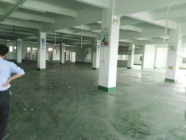 高埗镇独门独院现成精装修标准厂房出租