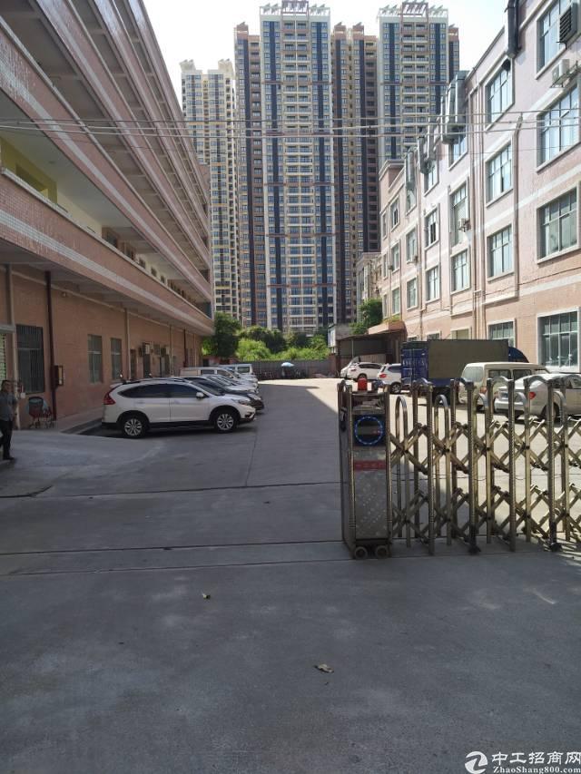 坪山 南湖工业区一楼2000平层高6米可分租-图3