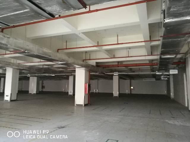 坂田华为一楼5000平方