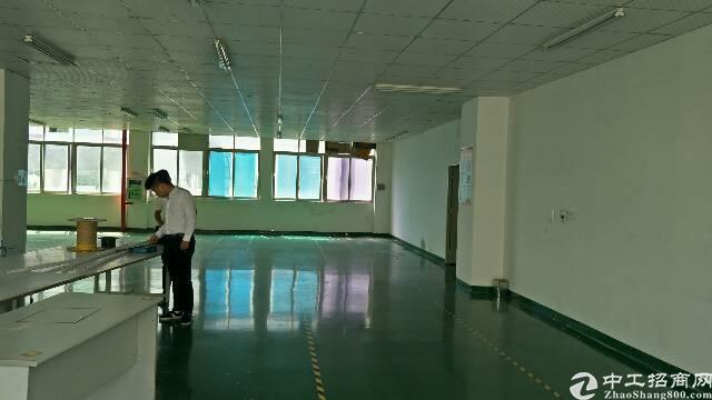 龙华大浪新百丽附近楼上精装修厂房招租1300平方