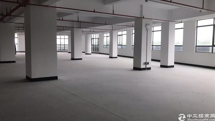 厚街镇下汴全新厂房楼上1200带消防喷淋招租
