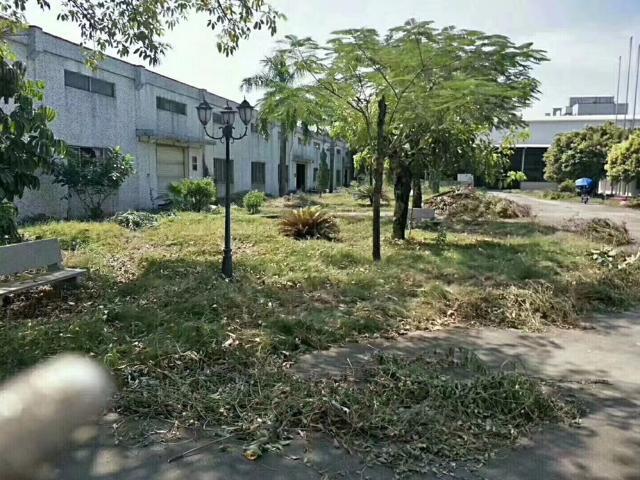 圳美新出花园式厂房800平方米单一层厂房招租