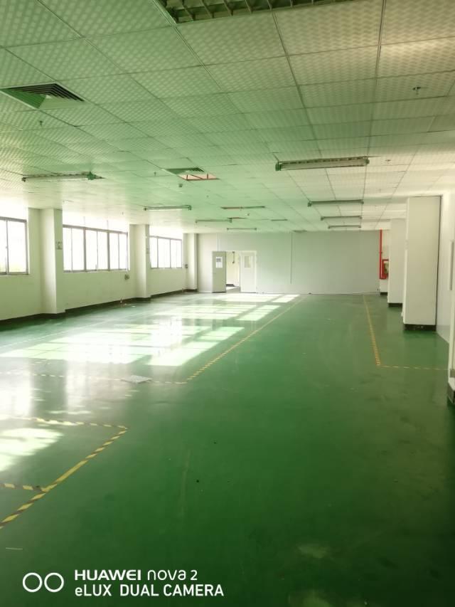 新出厂房龙华大浪商业中心,大小可分组