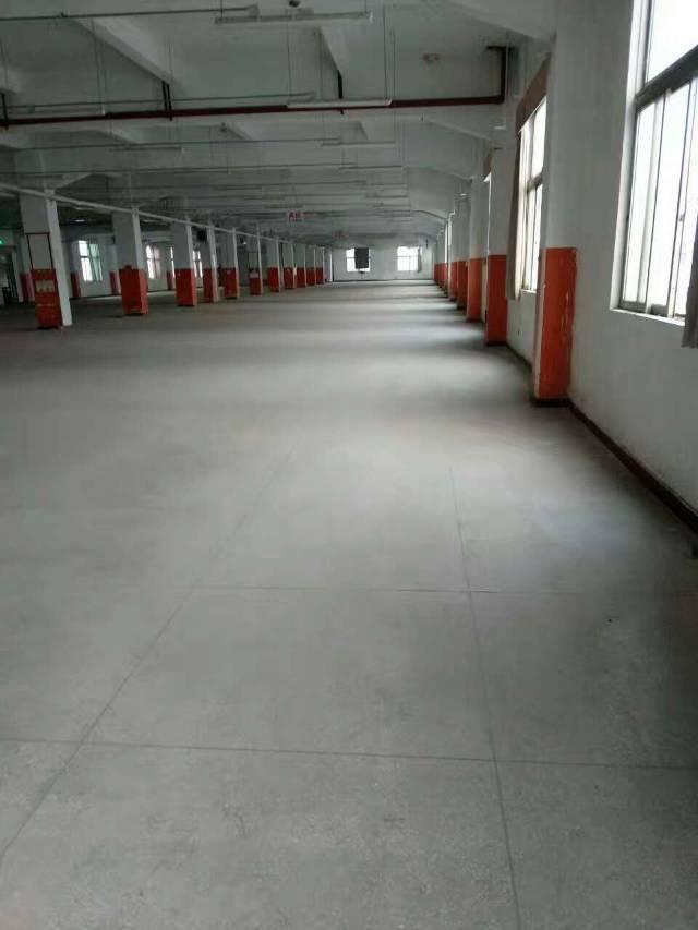 横岗荷坳地铁站附近厂房2000平高度5米报价24块可做物流