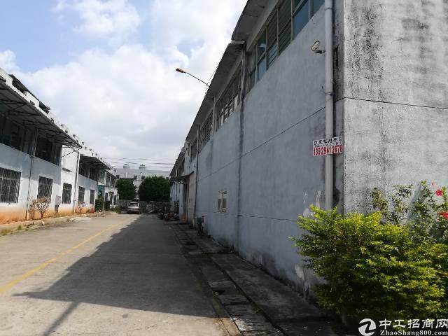 塘厦四村高速出口2600平方标准一楼厂房出租。