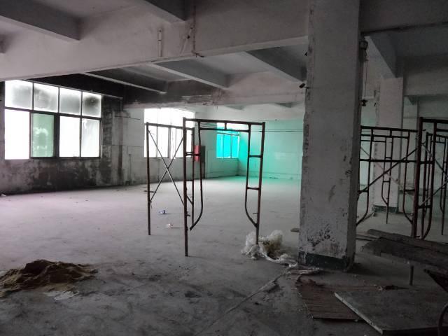 松岗燕川三楼400平米