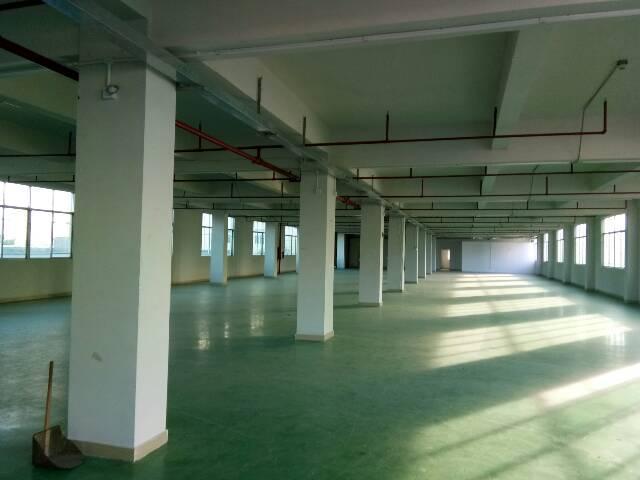 龙岗坪地龙岗大道标准厂房1500平米出租