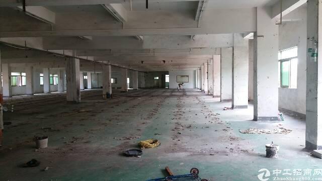 白沙独院分租整层、形象好,带装修办公室、交通便利-图4
