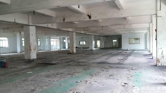 白沙独院分租整层、形象好,带装修办公室、交通便利-图3