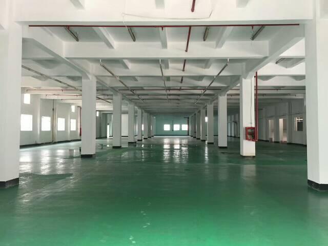 西乡高新技术园厂房出租