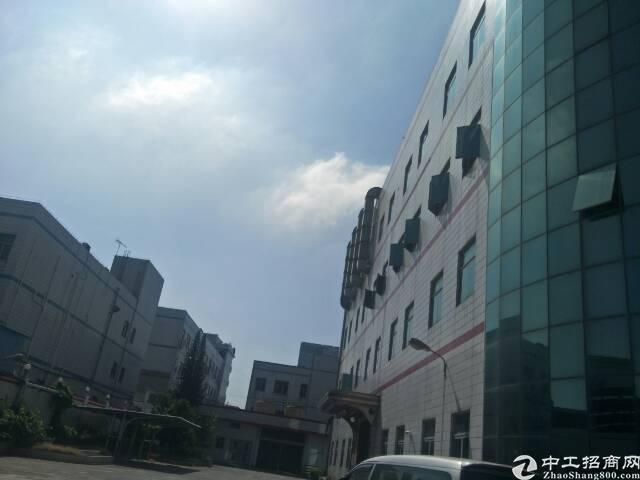 光明新区蒋石红本独栋厂房两层2550平方出租