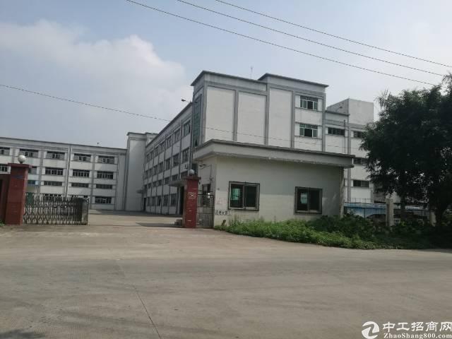 茶山下朗独院5400平方厂房招租