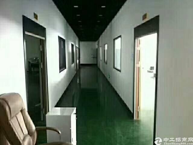 坪山石井独院3楼1200平出租