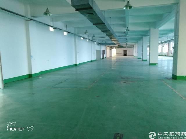 福永新出装修厂房分租300平,800平,1000平