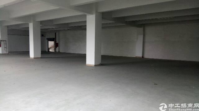 光明高新园区楼上厂房招租-图3