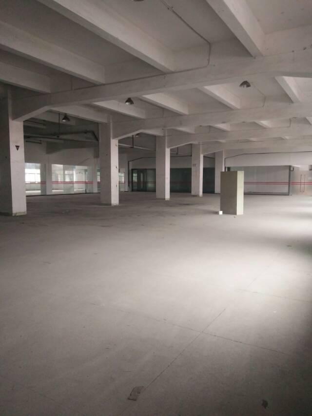 东莞市厚街镇新出低价出租标准厂房1200平