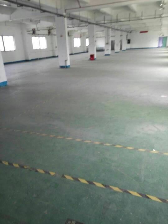 平湖辅城坳工业区独门独院厂房5320平方大小分租