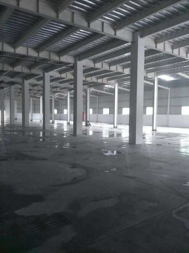 清溪独院钢构厂房12500平年尾亮相-图2