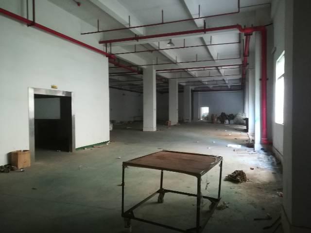 公明上村一楼980平米厂房出租