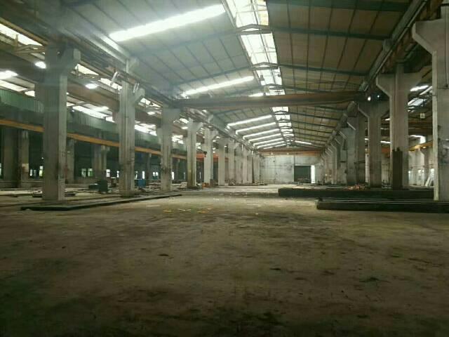 惠阳镇隆原房东标准钢构厂房分租