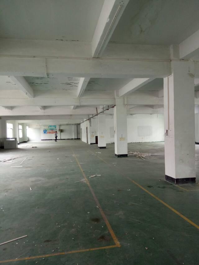 坪山新区坑梓老坑工业区独院厂房三层4500平方招租