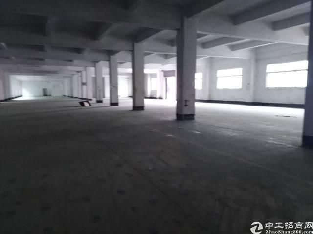 清溪镇一楼滴水5米水电到位