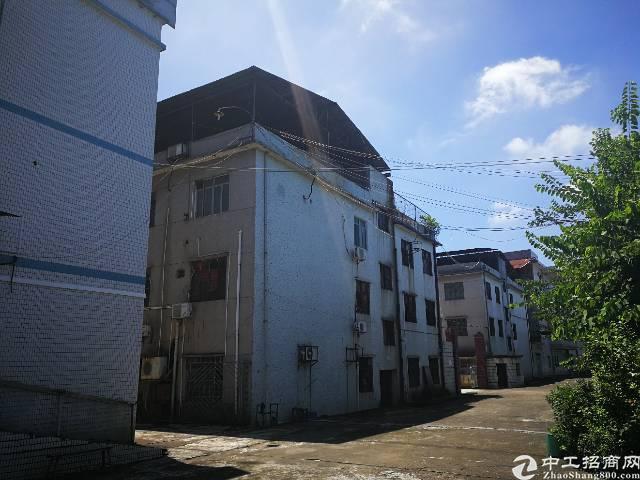 谢岗镇占地18亩集体证独院厂房出售