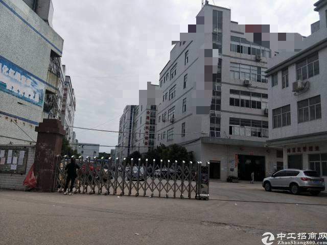 公明南光高速路口独门独院7500平方火招租