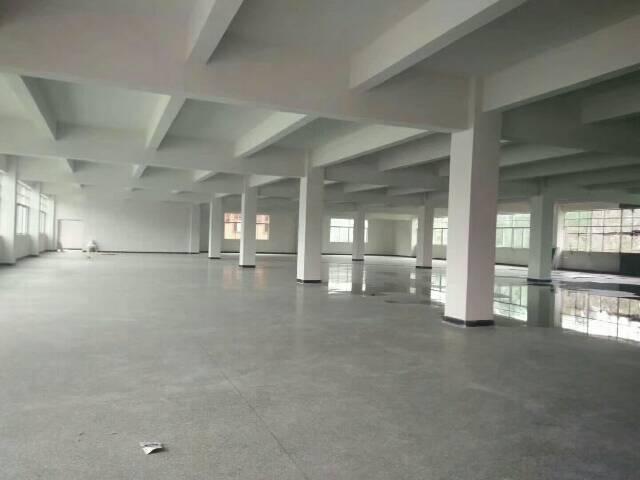 樟木头原房东独院厂房 三层3700平,舍1500平,电200