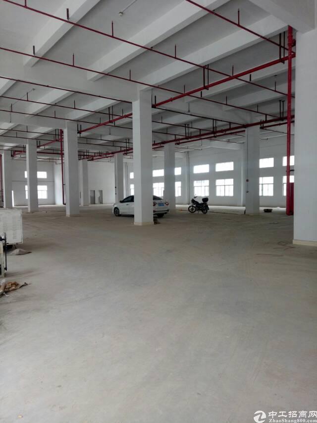 惠州沥林高速出口旁全新厂房15000平方米出租