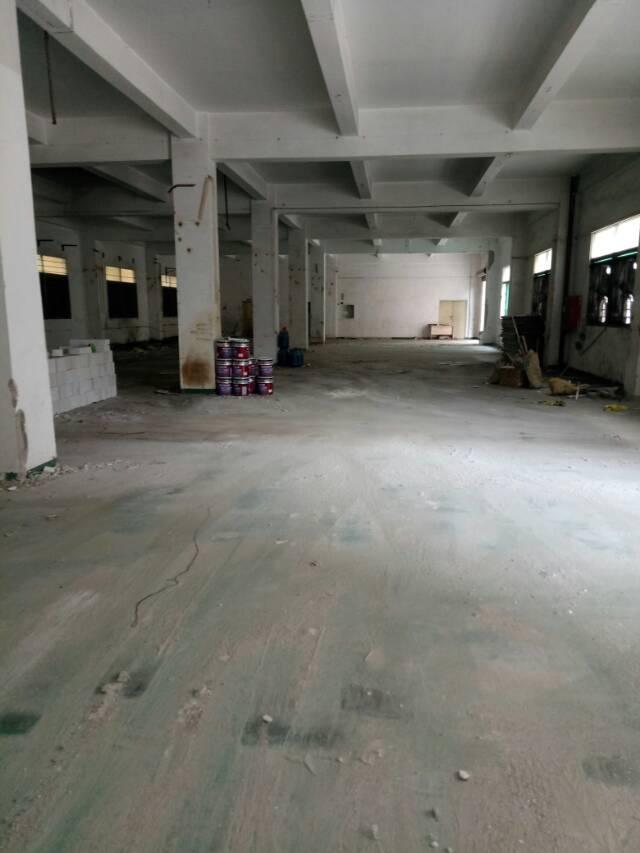坪地标准一楼出租800平米