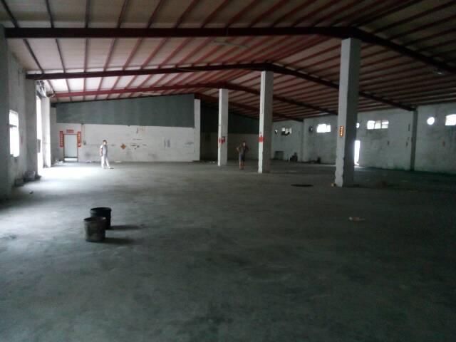 1000平方单一层钢构厂房招租