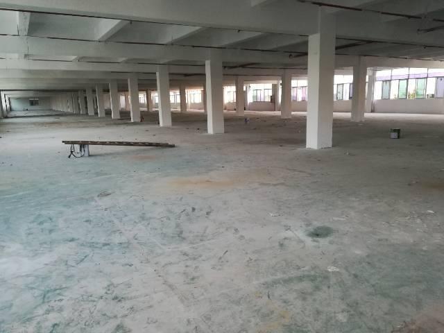 公明中心红本厂房6000平米出租