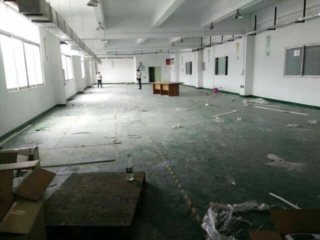 松岗燕川大工业区新出楼上厂房900平