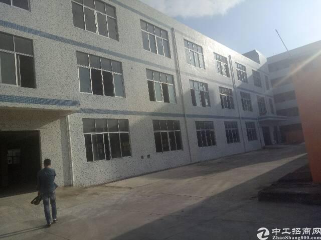 沙井沙头独院1-3层4200平 过消防 形象好 可分租厂房