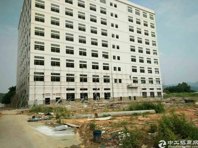 虎门原房东全新亿万先生,厂房面积28000平方。