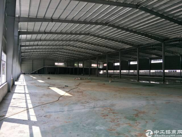 新出独院单一层钢构,滴水8.5米。-图2
