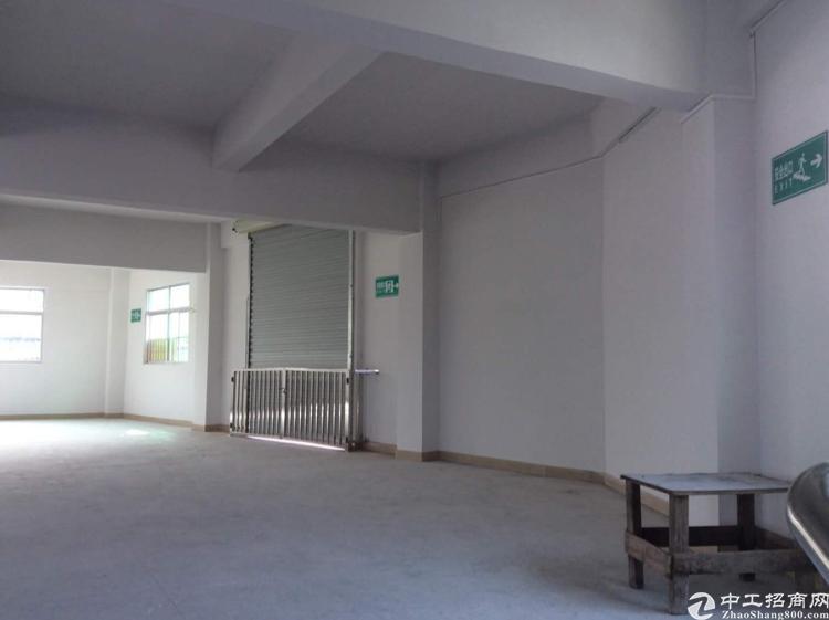 塘厦石鼓两层独栋厂房可以任何行业照片真的