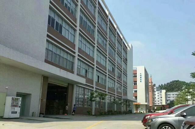 福永和平独栋厂房13000平方1-5层带装修可分租