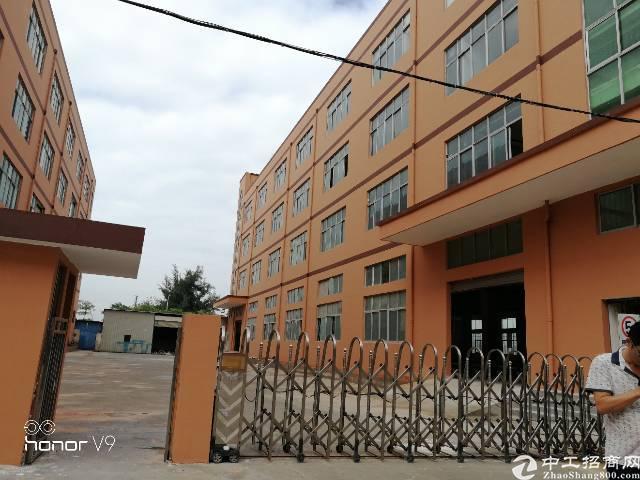 福永整栋带装修厂房出租,可分300平.500平.800平