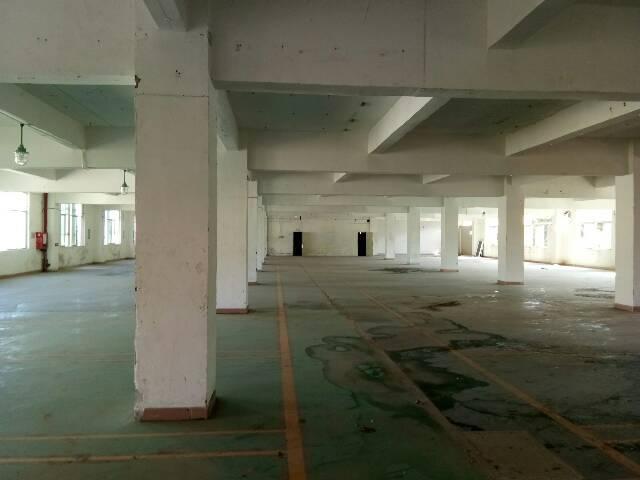 坪地3000平米独院厂房