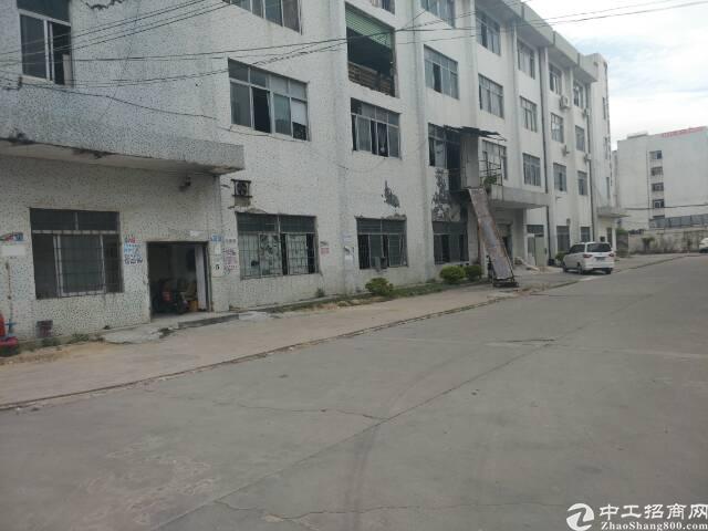 龙岗坪地新出标准一楼800平米,交通便利,价格实惠!
