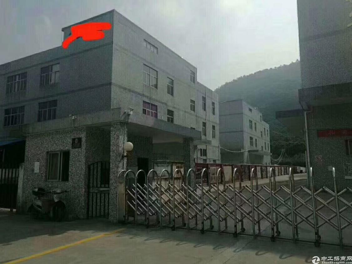 福永独门独院12500平方厂房出租
