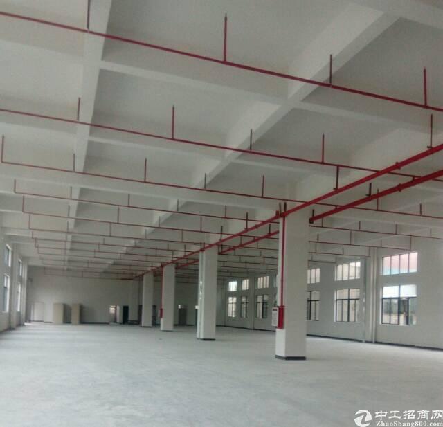 茶山全新高标准独院厂房15000平米出租-图9